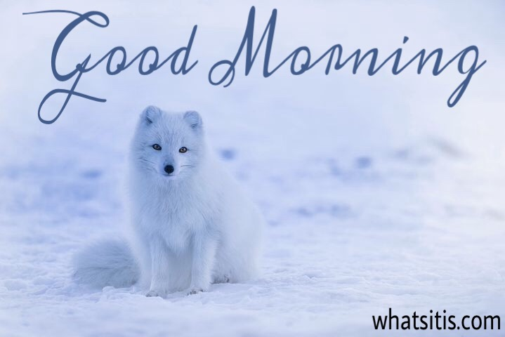 Good morning picture for Facebook