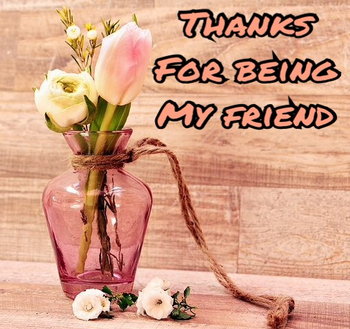 Thanks for being my friend image