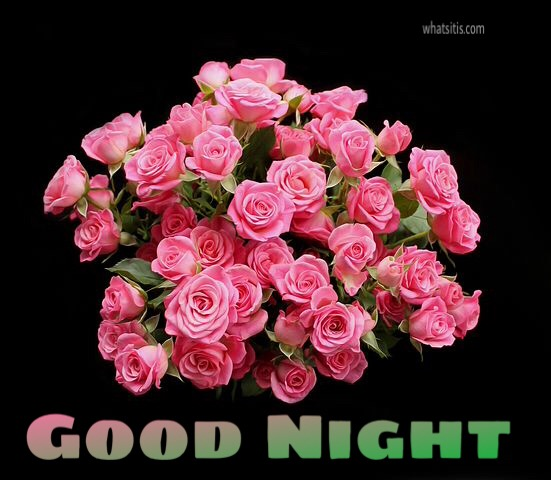 good night flowers wallpapers