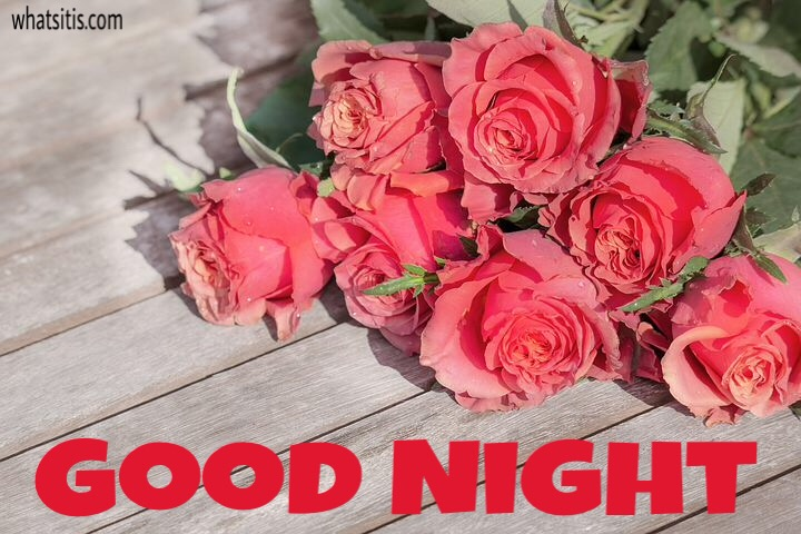 Good night Flowers Wallpaper with rose