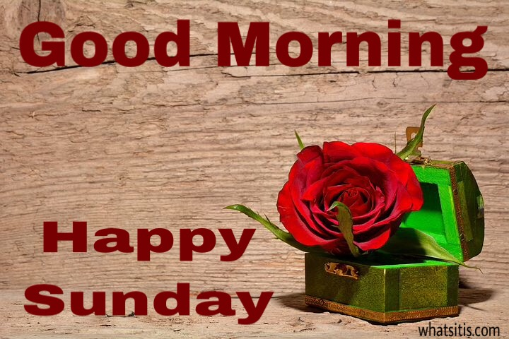 New good morning sunday images for Facebook