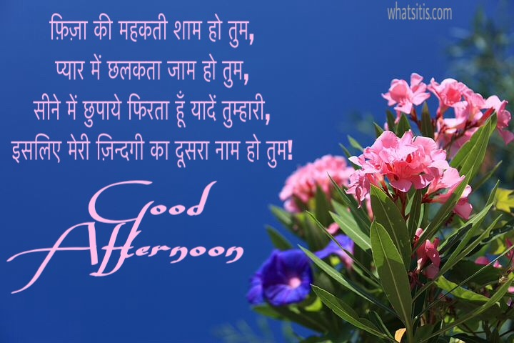 Good afternoon shayari in hindi