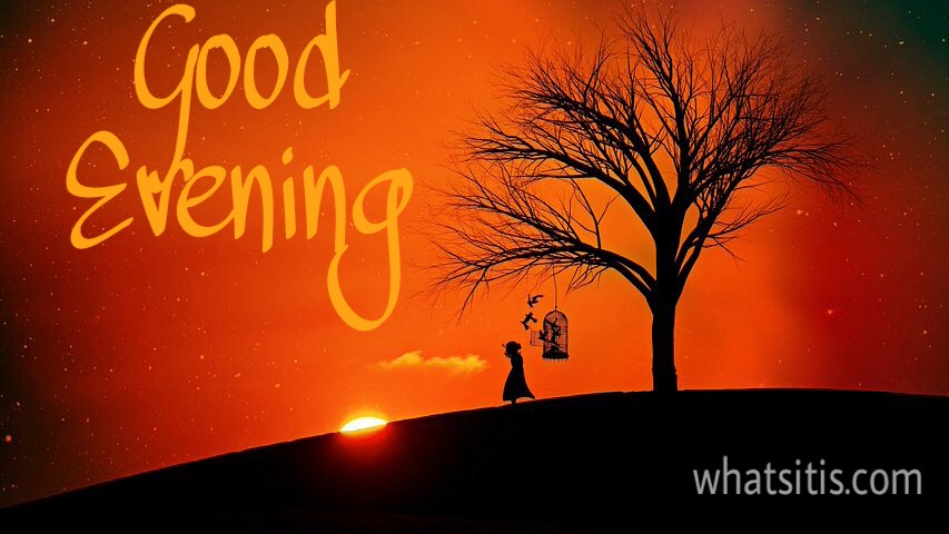 Wallpaper of good evening