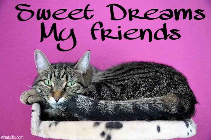 Sweet dreams my friends