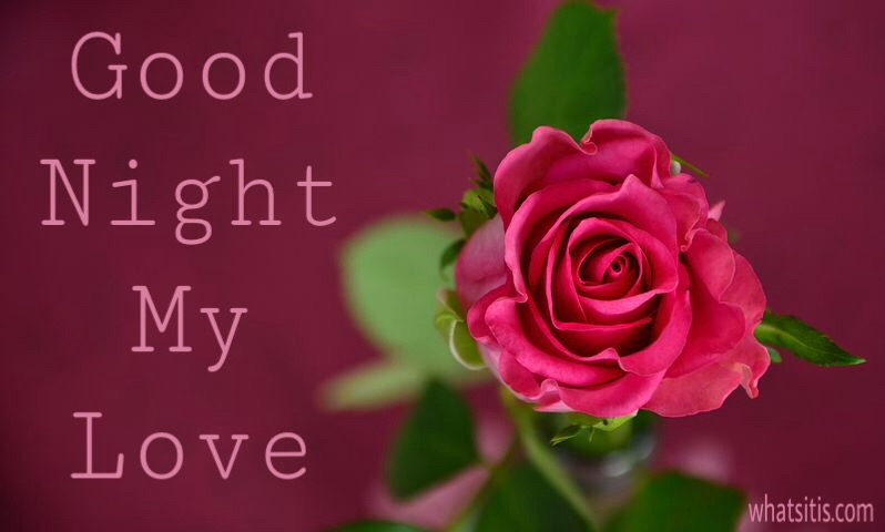 Good night image with red rose