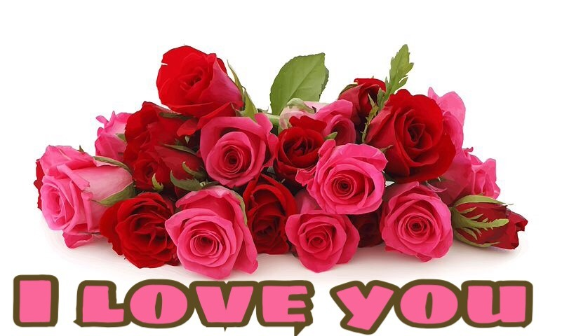 i love you images with roses