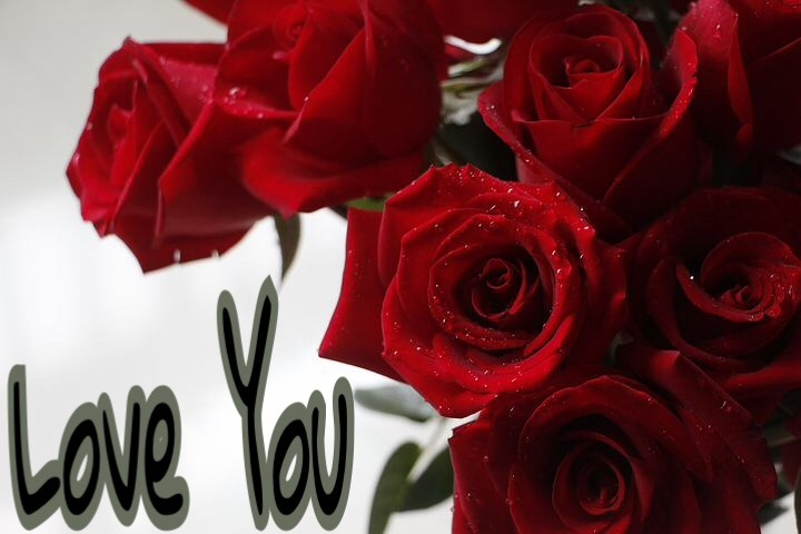 I love you Images For Facebook with rose