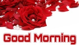 43 Good Morning Love Images For Girlfriend , Boyfriend In Hindi & English