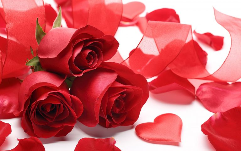 Red Rose love images download for whatsapp