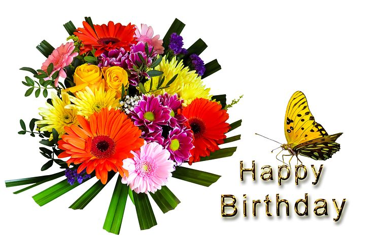 50 50 Cute Birthday Wishes For Best Frends To Wish Happy Birthday