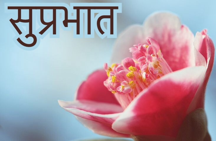 suprabhat images with flowers