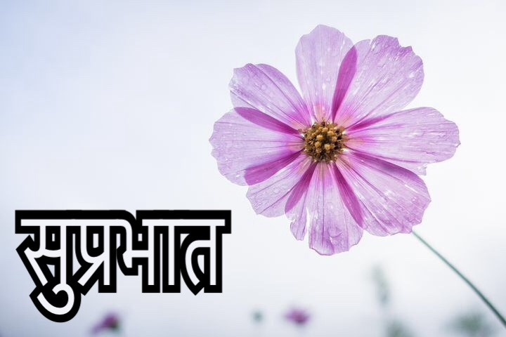 50 Latest Suprabhat Images For Whatsapp In Hindi | Suprabhat In Hindi