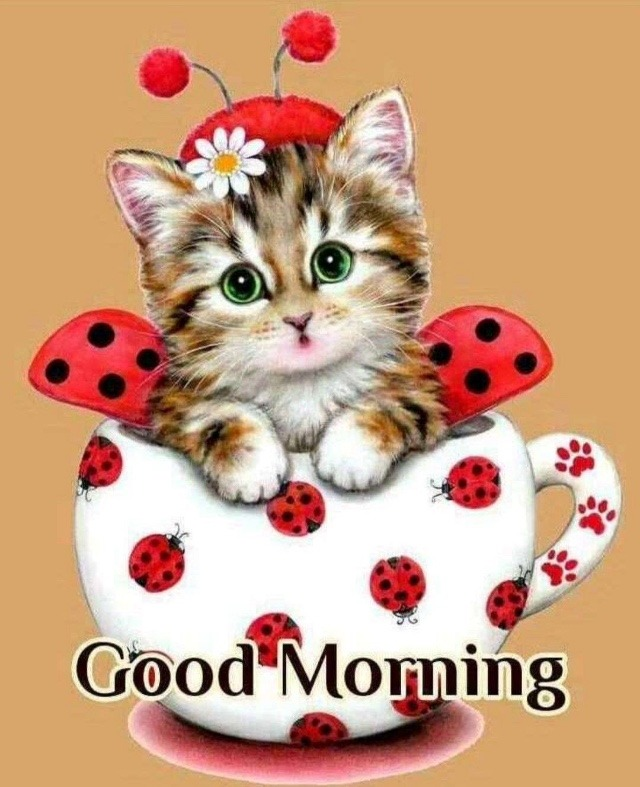 Cute good morning image 2018
